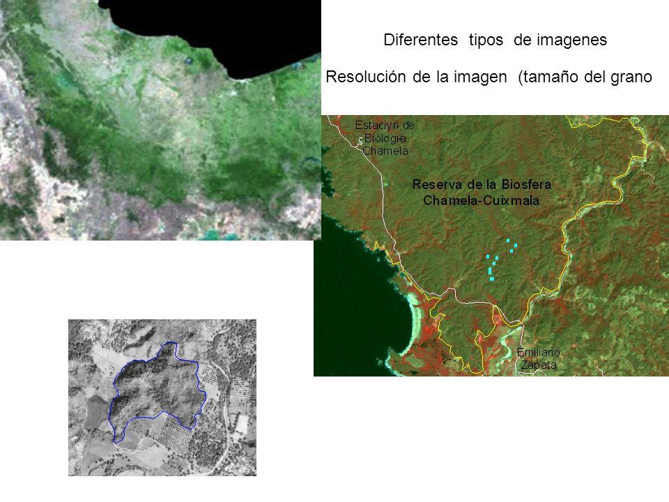Resolución de la imagen (tamaño del grano Diferentes tipos de imagenes