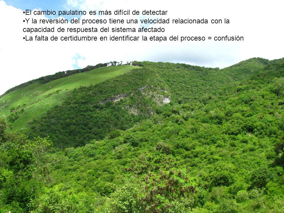 Y la sinergia con los efectos de la deforestación, alteración y fragmentación de los ecosistemas