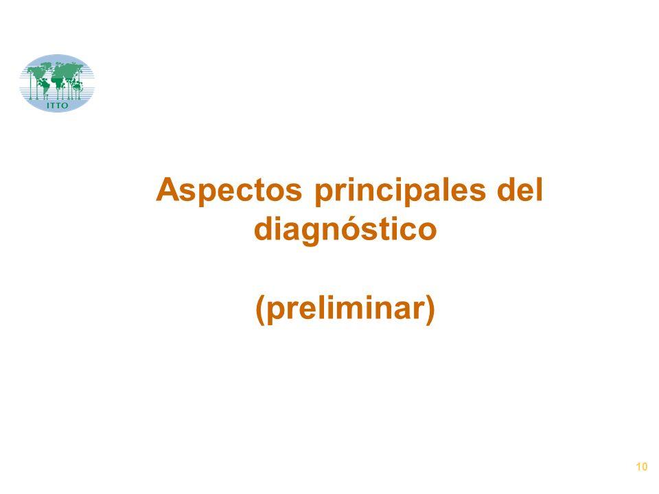 10 Aspectos principales del diagnóstico (preliminar)