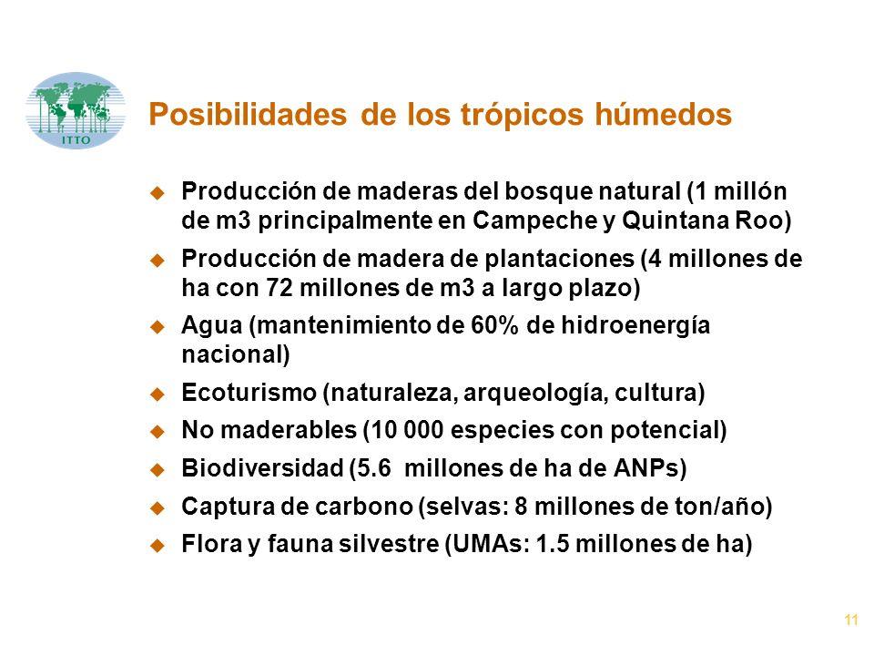 11 Posibilidades de los trópicos húmedos u Producción de maderas del bosque natural (1 millón de m3 principalmente en Campeche y Quintana Roo) u Producción de madera de plantaciones (4 millones de ha con 72 millones de m3 a largo plazo) u Agua (mantenimiento de 60% de hidroenergía nacional) u Ecoturismo (naturaleza, arqueología, cultura) u No maderables (10 000 especies con potencial) u Biodiversidad (5.6 millones de ha de ANPs) u Captura de carbono (selvas: 8 millones de ton/año) u Flora y fauna silvestre (UMAs: 1.5 millones de ha)