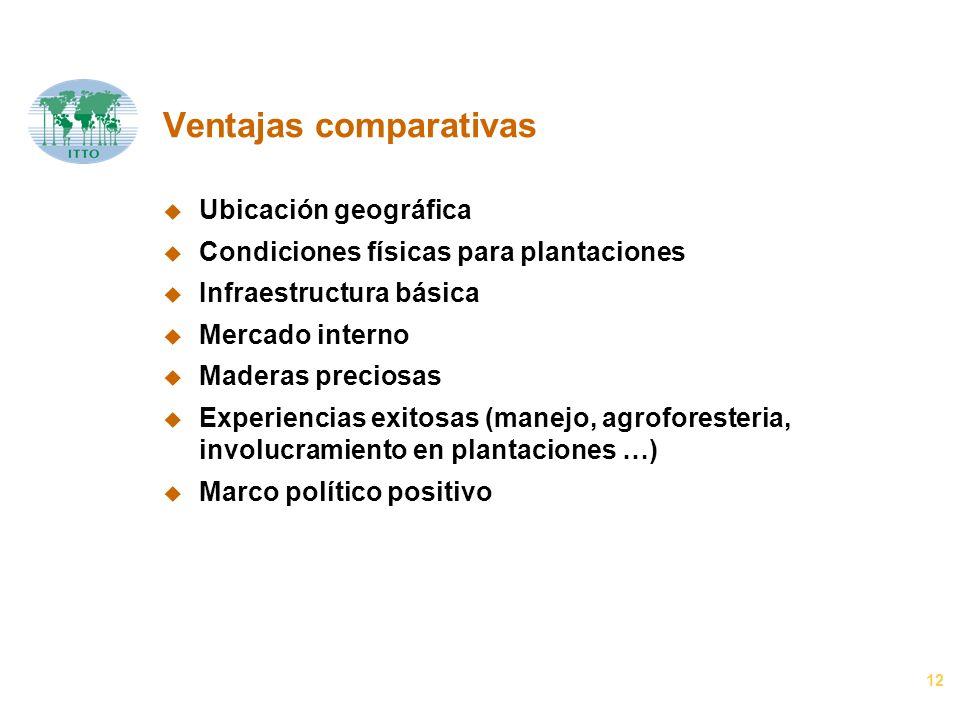 12 Ventajas comparativas u Ubicación geográfica u Condiciones físicas para plantaciones u Infraestructura básica u Mercado interno u Maderas preciosas
