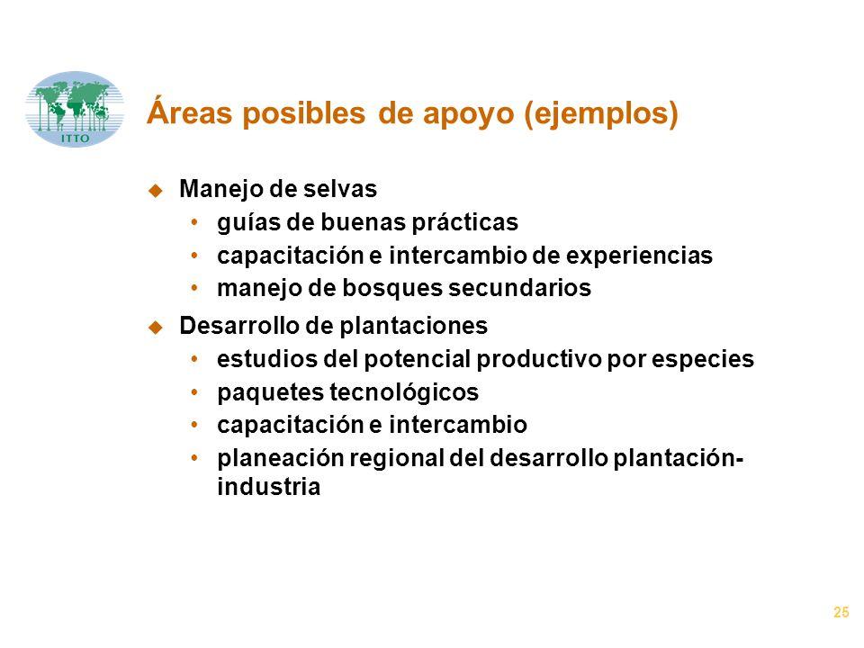 25 Áreas posibles de apoyo (ejemplos) u Manejo de selvas guías de buenas prácticas capacitación e intercambio de experiencias manejo de bosques secund