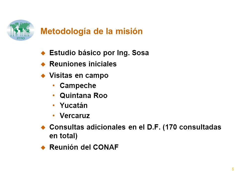 5 Metodología de la misión u Estudio básico por Ing. Sosa u Reuniones iniciales u Visitas en campo Campeche Quintana Roo Yucatán Vercaruz u Consultas