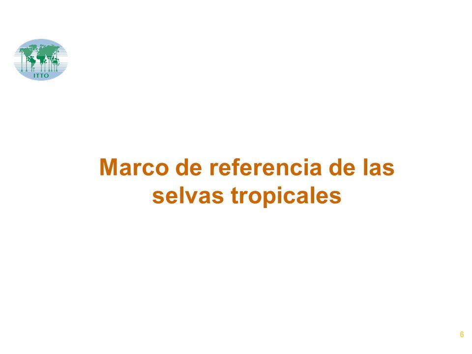 6 Marco de referencia de las selvas tropicales