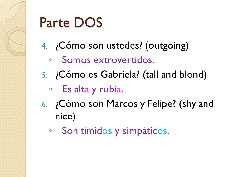 Parte DOS 4. ¿Cómo son ustedes? (outgoing) Somos extrovertidos. 5. ¿Cómo es Gabriela? (tall and blond) Es alta y rubia. 6. ¿Cómo son Marcos y Felipe?