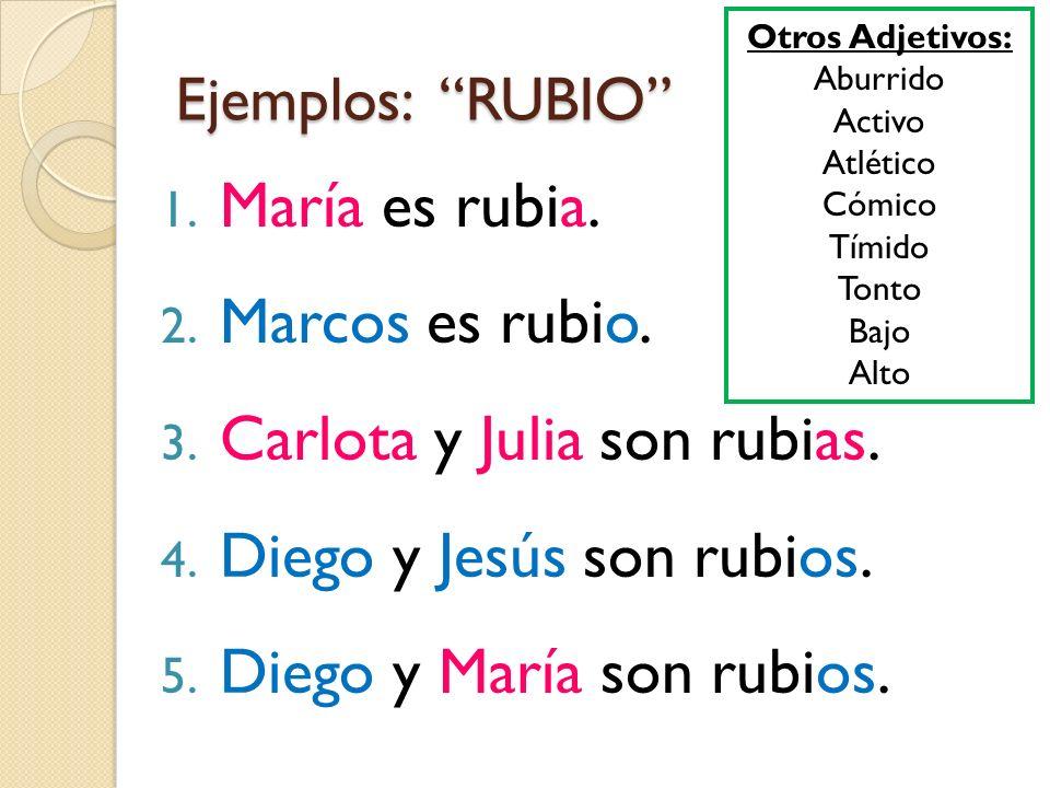 Ejemplos: RUBIO 1. María es rubia. 2. Marcos es rubio. 3. Carlota y Julia son rubias. 4. Diego y Jesús son rubios. 5. Diego y María son rubios. Otros