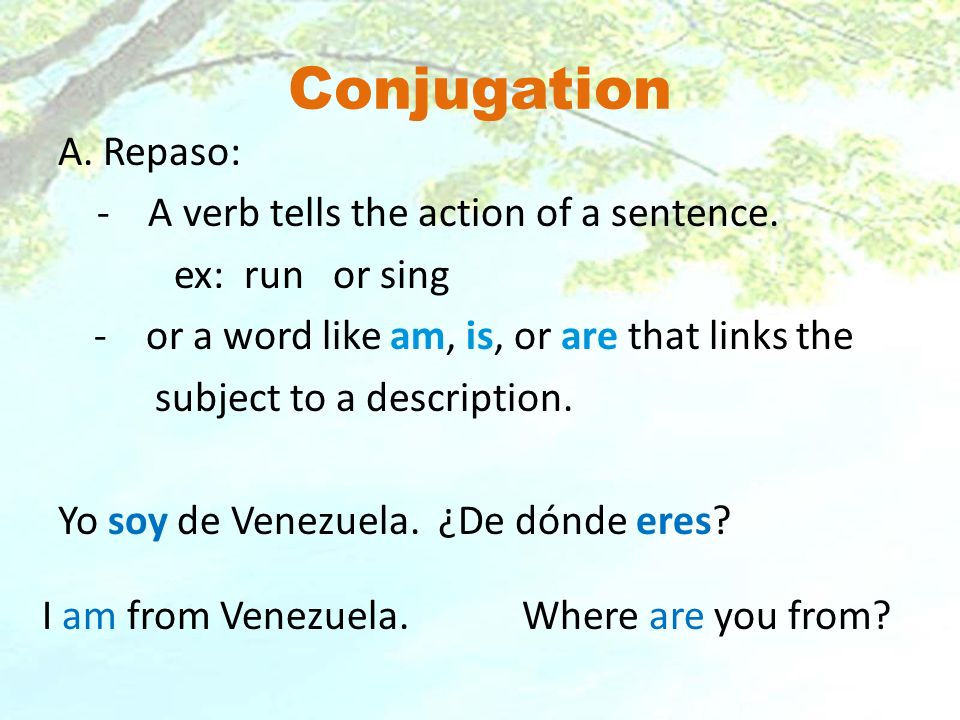 What does conjugated mean.
