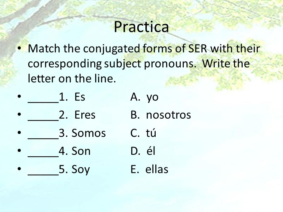 Practica Match the conjugated forms of SER with their corresponding subject pronouns. Write the letter on the line. _____1. EsA. yo _____2. EresB. nos