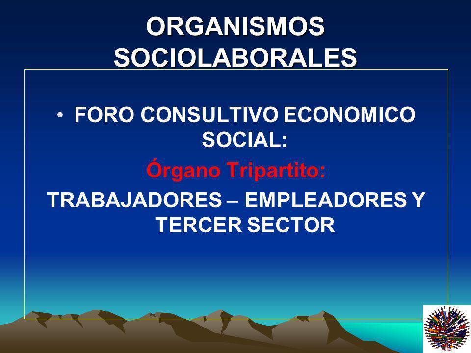 ORGANISMOS SOCIOLABORALES DECLARACIÓN SOCIOLABORAL EN 1998 SE ADOPTÓ LA DECLARACIÓN SOCIOLABORAL DEL MERCOSUR LA APLICACIÓN Y OBSERVANCIA ESTÁ A CARGO DE LA COMISIÓN DE SEGUIMIENTO, ORGANISMO TRIPARTITO DEL MERCOSUR