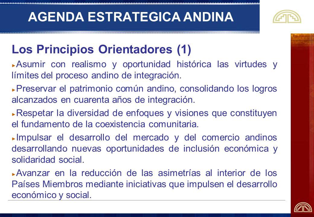 AGENDA ESTRATEGICA ANDINA Los Principios Orientadores (1) Asumir con realismo y oportunidad histórica las virtudes y límites del proceso andino de int