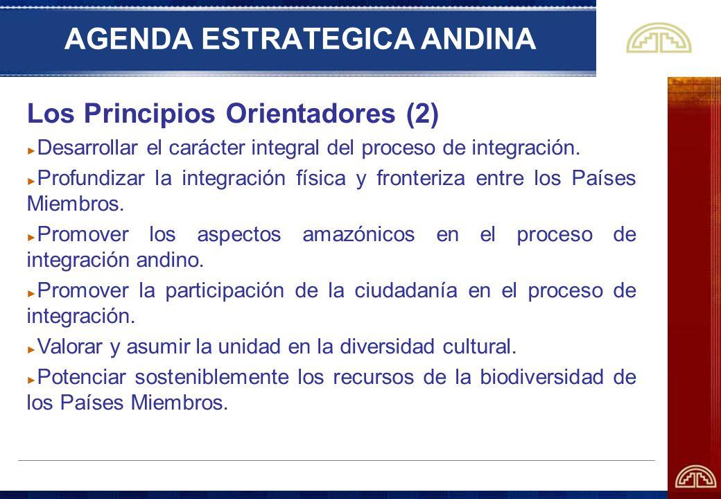 AGENDA ESTRATEGICA ANDINA Los Principios Orientadores (2) Desarrollar el carácter integral del proceso de integración. Profundizar la integración físi