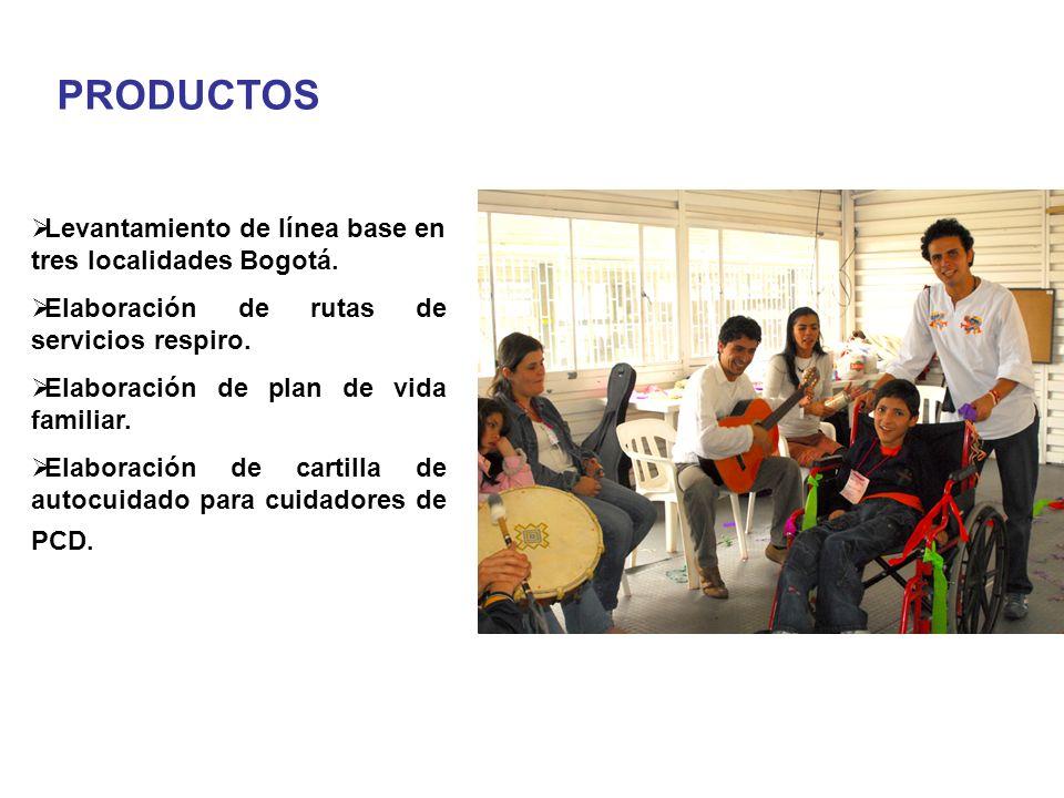 Levantamiento de línea base en tres localidades Bogotá. Elaboración de rutas de servicios respiro. Elaboración de plan de vida familiar. Elaboración d
