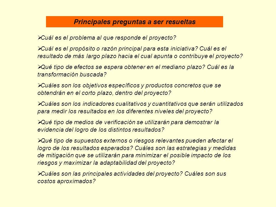 Principales preguntas a ser resueltas Cuál es el problema al que responde el proyecto? Cuál es el propósito o razón principal para esta iniciativa? Cu