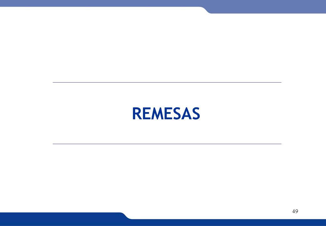 XVI REUNIÓN DEL COMITÉ INTERINSTITUCIONAL DE ESTADÍSTICAS DE MIGRACIONES 49 REMESAS