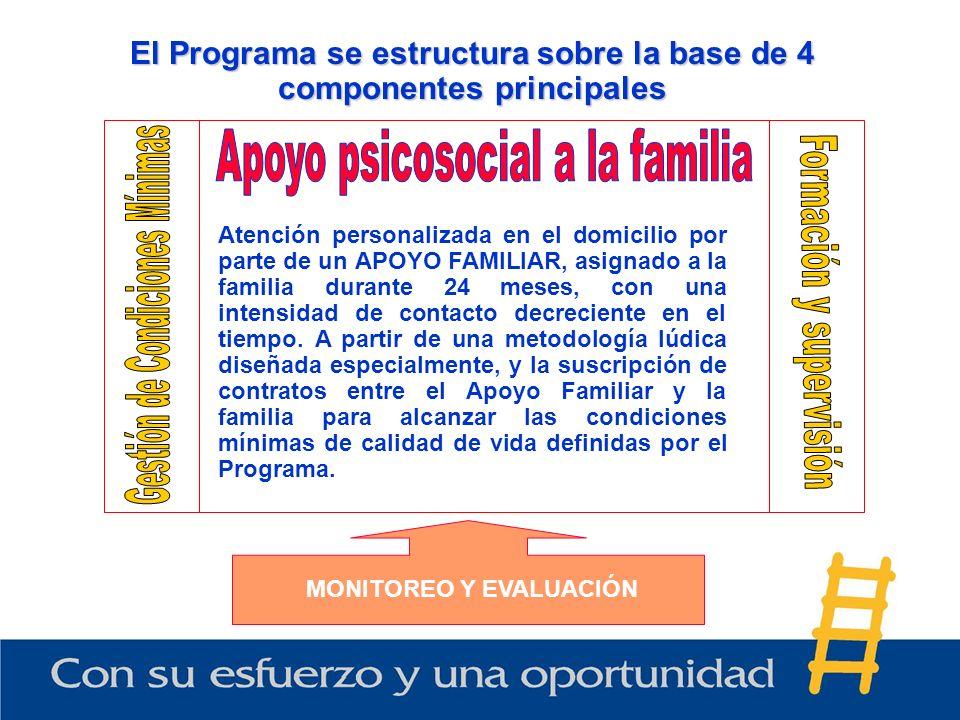 El Programa se estructura sobre la base de 4 componentes principales Atención personalizada en el domicilio por parte de un APOYO FAMILIAR, asignado a la familia durante 24 meses, con una intensidad de contacto decreciente en el tiempo.