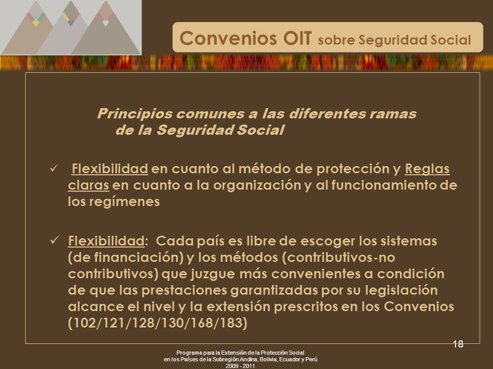 Programa para la Extensión de la Protección Social en los Países de la Subregión Andina, Bolivia, Ecuador y Perú 2009 - 2011 18 Convenios OIT sobre Se