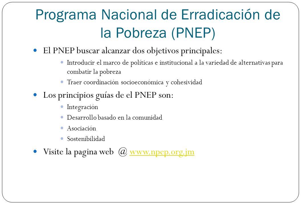 El PNEP buscar alcanzar dos objetivos principales: Introducir el marco de políticas e institucional a la variedad de alternativas para combatir la pob