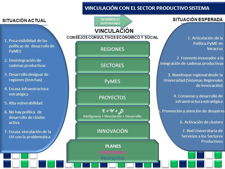 VINCULACIÓN 1.Poca visibilidad de las políticas de desarrollo de PyMES 2.Desintegración de cadenas productivas 3.Desarrollo desigual de regiones (brec