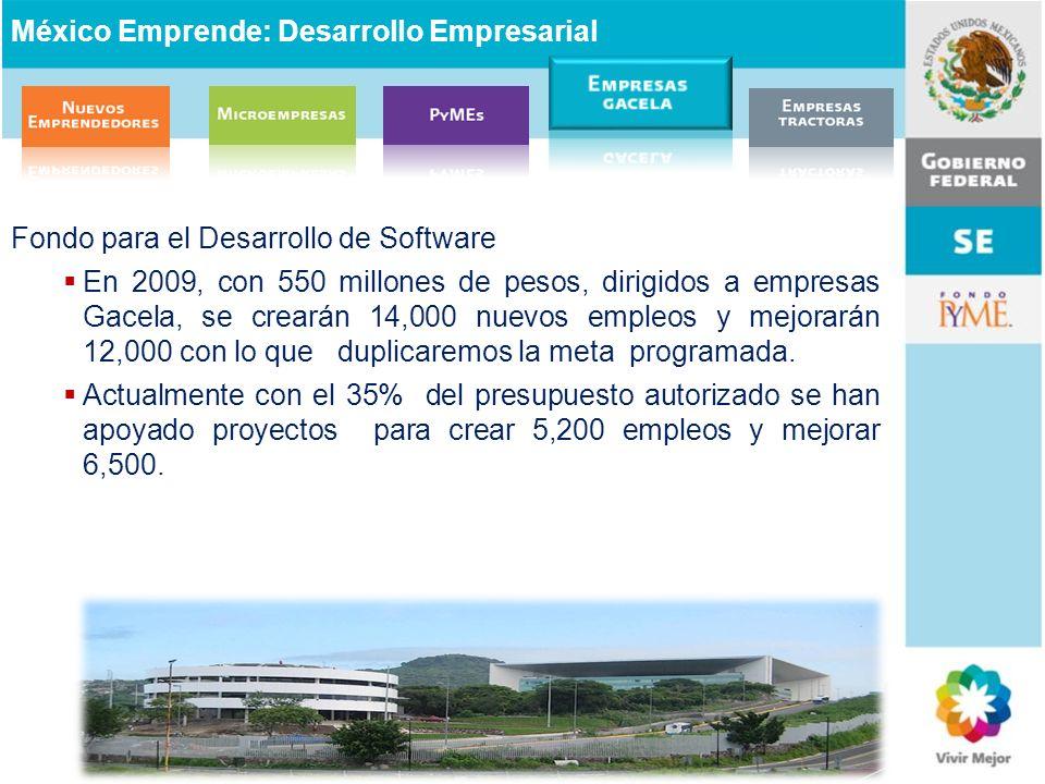 Fondo para el Desarrollo de Software En 2009, con 550 millones de pesos, dirigidos a empresas Gacela, se crearán 14,000 nuevos empleos y mejorarán 12,