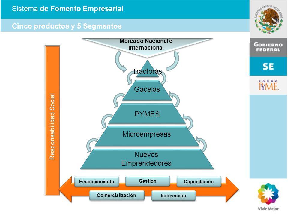 Responsabilidad Social Sistema de Fomento Empresarial Cinco productos y 5 Segmentos Gacelas PYMES Microempresas Nuevos Emprendedores Tractoras Mercado