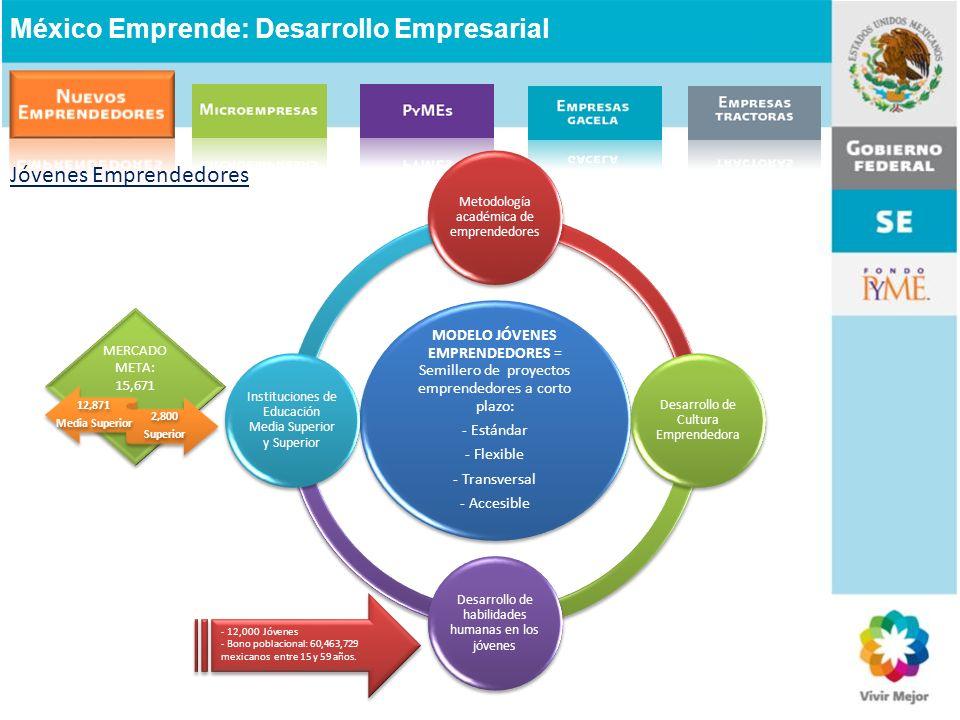Jóvenes Emprendedores México Emprende: Desarrollo Empresarial MODELO JÓVENES EMPRENDEDORES = Semillero de proyectos emprendedores a corto plazo: - Est
