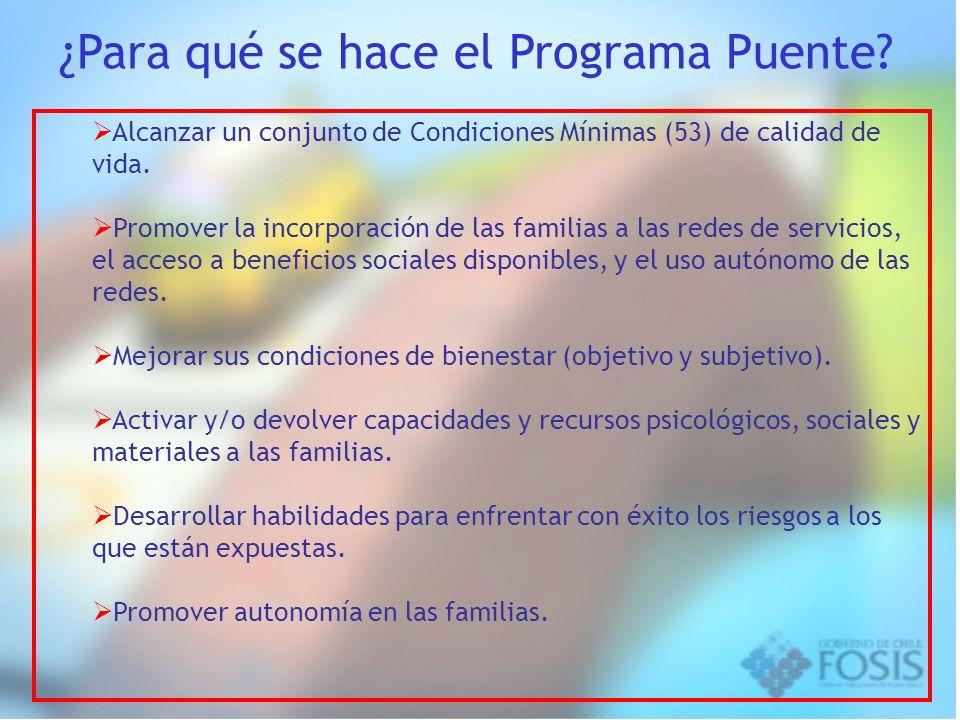 Alcanzar un conjunto de Condiciones Mínimas (53) de calidad de vida. Promover la incorporación de las familias a las redes de servicios, el acceso a b