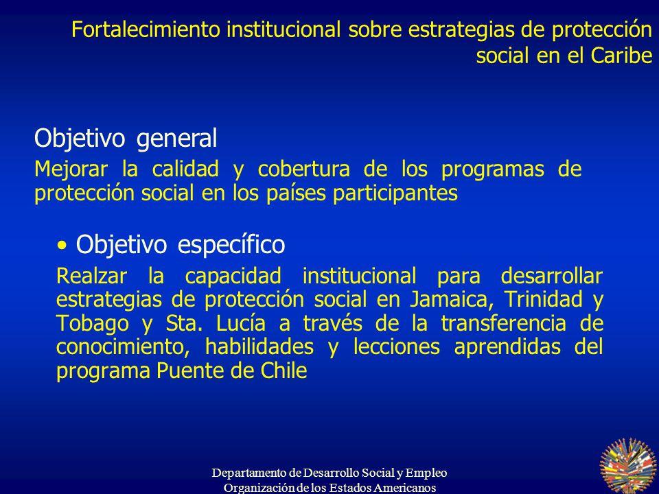 Departamento de Desarrollo Social y Empleo Organización de los Estados Americanos Objetivo específico Realzar la capacidad institucional para desarrol