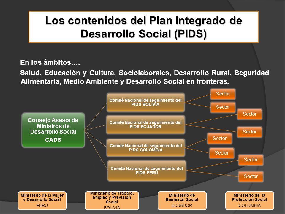 Los contenidos del Plan Integrado de Desarrollo Social (PIDS) Responsabilidades temáticas entre Comités Nacionales: Bolivia:Aspectos sociolaborales Colombia: Salud, Educación y cultura Ecuador:Armonización de estadísticas e indicadores sociales Perú:Seguridad alimentaria, Medio ambiente y desarrollo sostenible