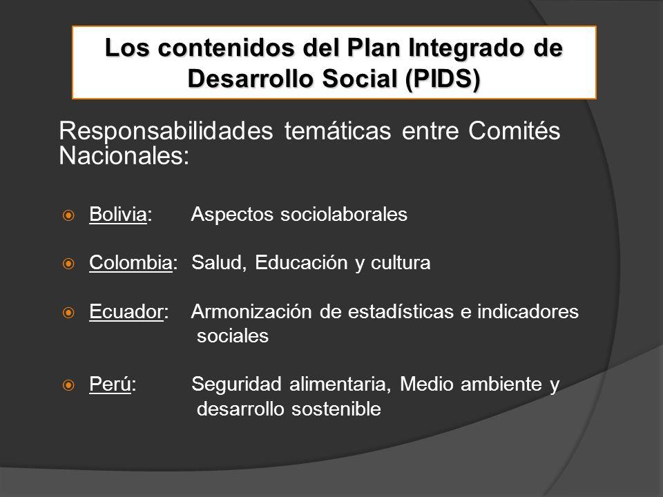 Desde el 2005, las iniciativas del componente Sociolaboral del PIDS llevaron a la elaboración de una propuesta marco con el apoyo técnico del Ministerio de Trabajo y Asuntos Sociales de España y la Organización Internacional del Trabajo (OIT).