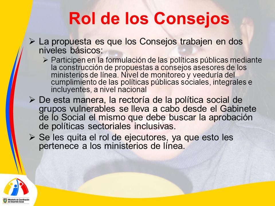 Rol de los Consejos La propuesta es que los Consejos trabajen en dos niveles básicos: Participen en la formulación de las políticas públicas mediante