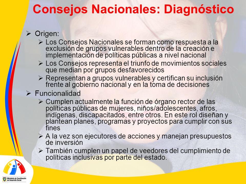 Consejos Nacionales: Diagnóstico Origen: Los Consejos Nacionales se forman como respuesta a la exclusión de grupos vulnerables dentro de la creación e