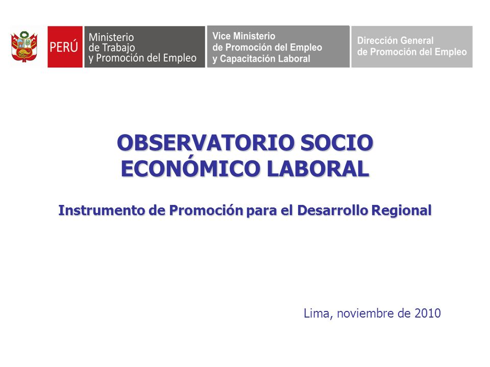 OBSERVATORIO SOCIO ECONÓMICO LABORAL Instrumento de Promoción para el Desarrollo Regional Lima, noviembre de 2010