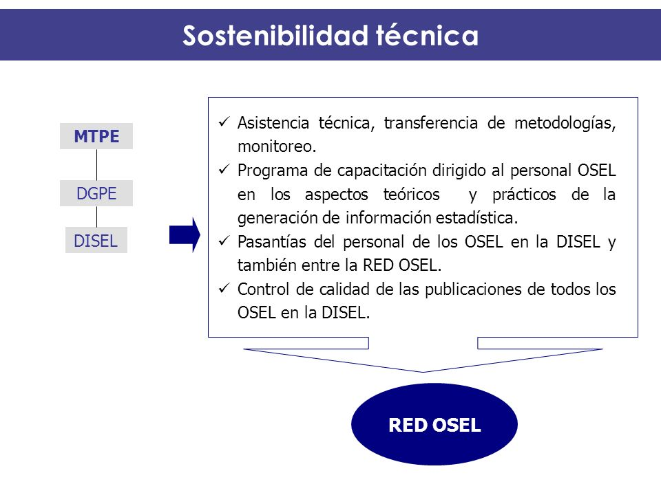 Sostenibilidad técnica RED OSEL Asistencia técnica, transferencia de metodologías, monitoreo. Programa de capacitación dirigido al personal OSEL en lo