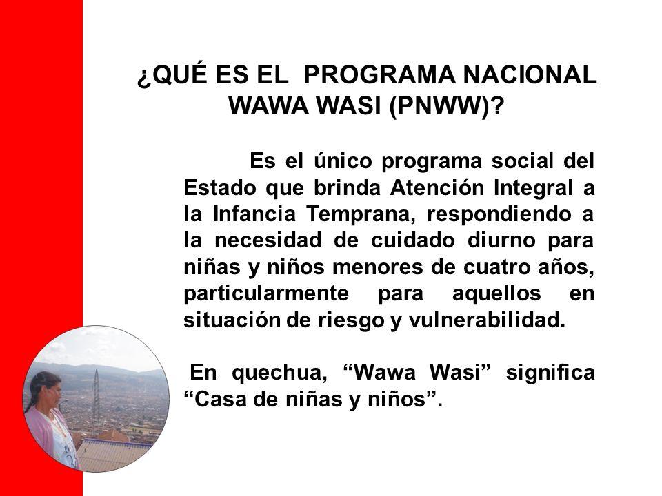 El PNWW fue creado en 1993 para brindar atención y cuidado diurno a niñas y niños en situación de pobreza, riesgo y vulnerabilidad; desde 1999 funcionó como un proyecto financiado por el BID (Banco Interamericano de Desarrollo).