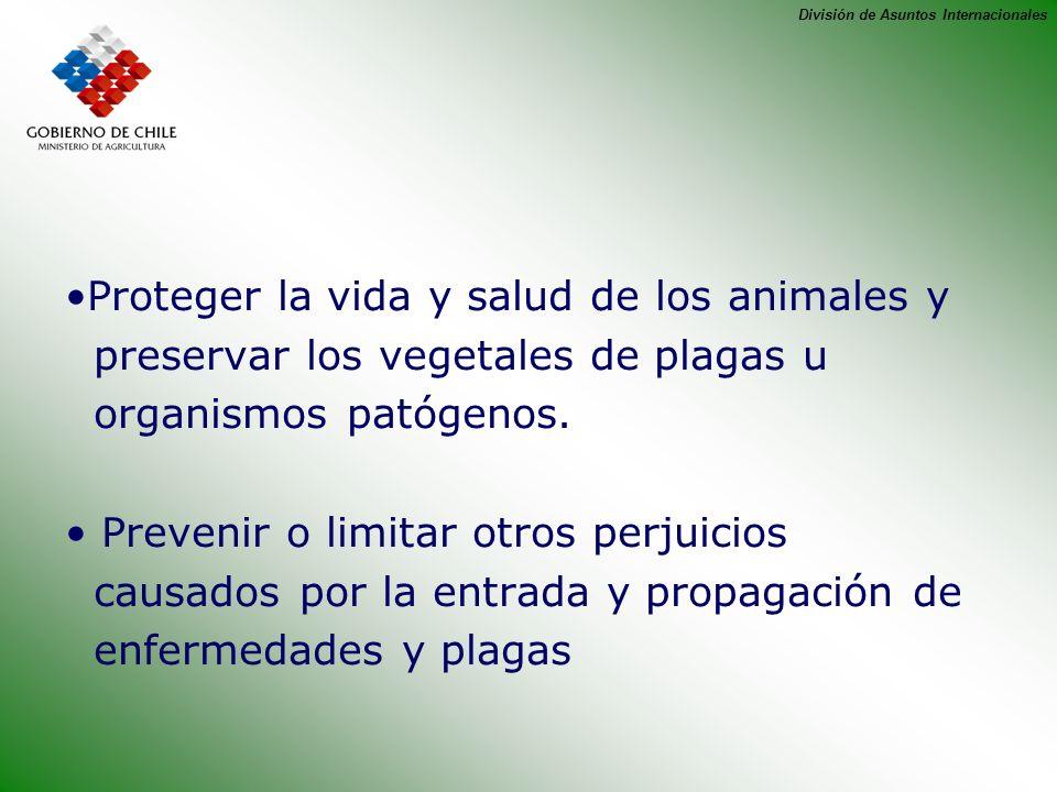División de Asuntos Internacionales Proteger la vida y salud de los animales y preservar los vegetales de plagas u organismos patógenos. Prevenir o li