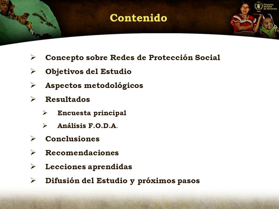 Contenido Concepto sobre Redes de Protección Social Objetivos del Estudio Aspectos metodológicos Resultados Encuesta principal Análisis F.O.D.A.
