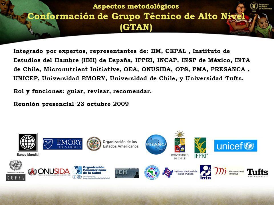 Aspectos metodológicos Conformación de Grupo Técnico de Alto Nivel (GTAN) Integrado por expertos, representantes de: BM, CEPAL, Instituto de Estudios del Hambre (IEH) de España, IFPRI, INCAP, INSP de México, INTA de Chile, Micronutrient Initiative, OEA, ONUSIDA, OPS, PMA, PRESANCA, UNICEF, Universidad EMORY, Universidad de Chile, y Universidad Tufts.