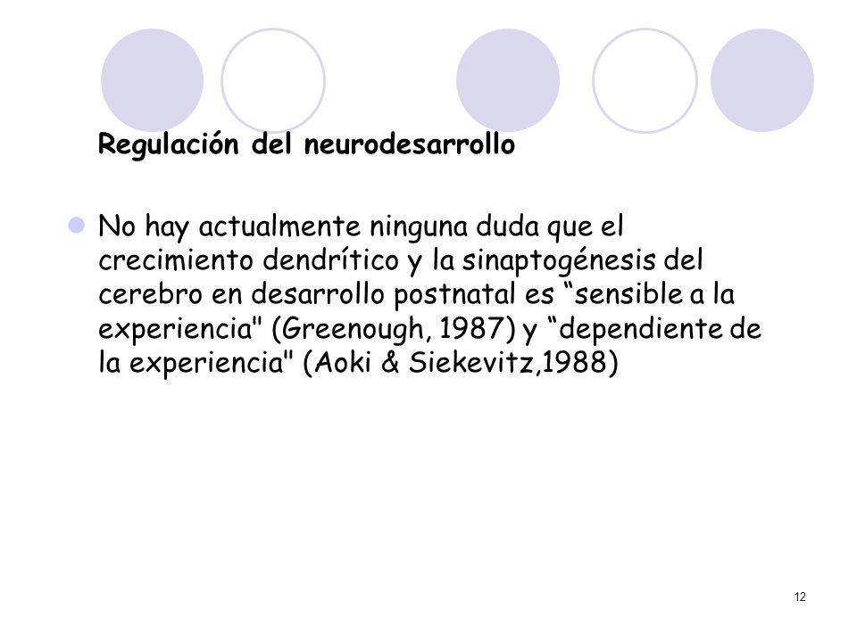 12 Regulación del neurodesarrollo No hay actualmente ninguna duda que el crecimiento dendrítico y la sinaptogénesis del cerebro en desarrollo postnata