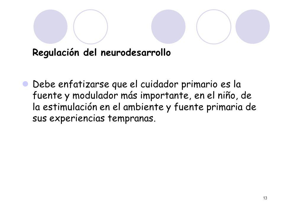 13 Regulación del neurodesarrollo Debe enfatizarse que el cuidador primario es la fuente y modulador más importante, en el niño, de la estimulación en