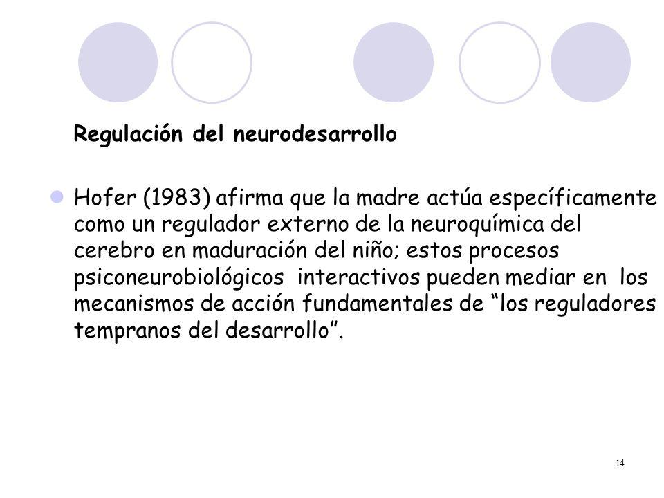 14 Regulación del neurodesarrollo Hofer (1983) afirma que la madre actúa específicamente como un regulador externo de la neuroquímica del cerebro en m