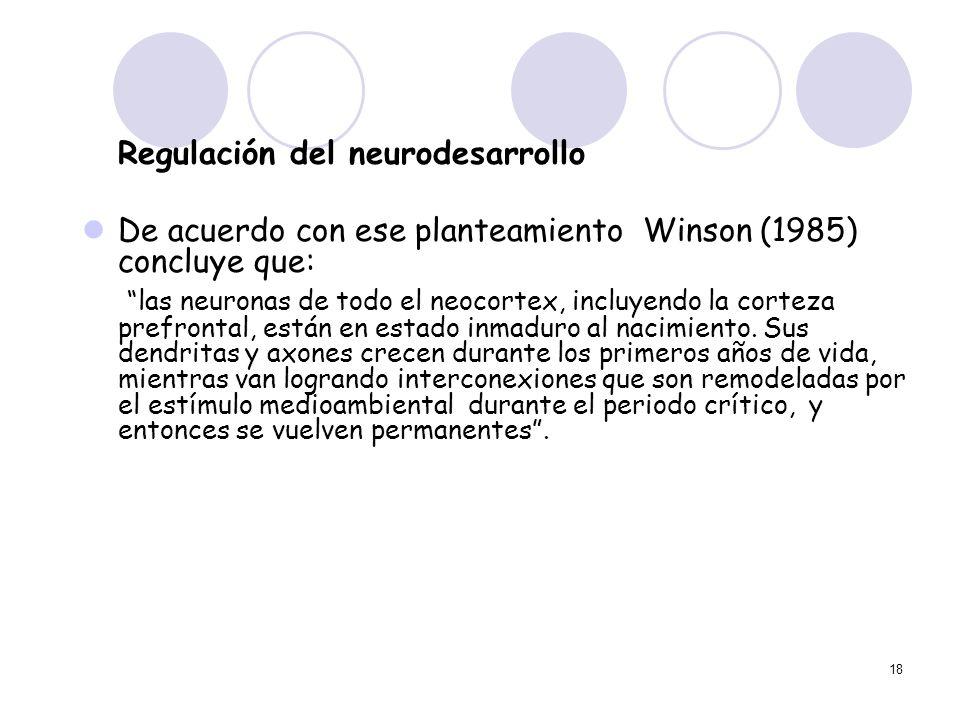 18 Regulación del neurodesarrollo De acuerdo con ese planteamiento Winson (1985) concluye que: las neuronas de todo el neocortex, incluyendo la cortez