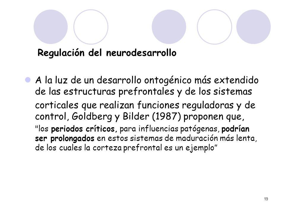 19 Regulación del neurodesarrollo A la luz de un desarrollo ontogénico más extendido de las estructuras prefrontales y de los sistemas corticales que