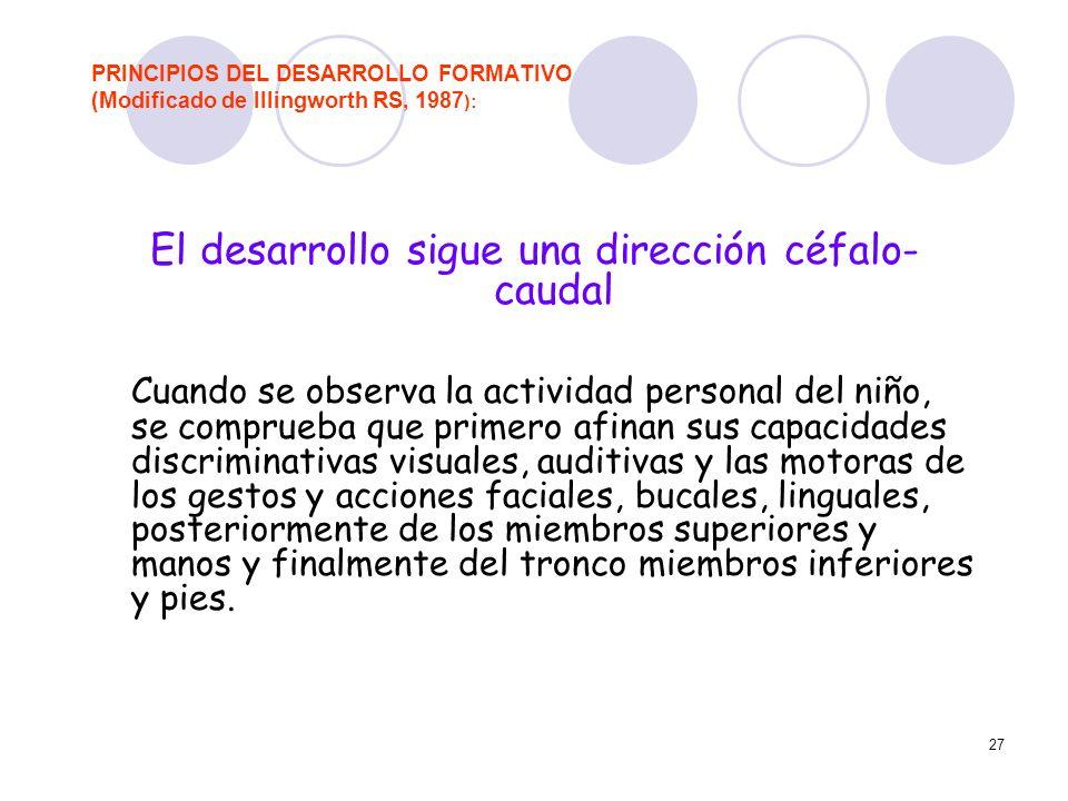 27 PRINCIPIOS DEL DESARROLLO FORMATIVO (Modificado de Illingworth RS, 1987 ): El desarrollo sigue una dirección céfalo- caudal Cuando se observa la ac