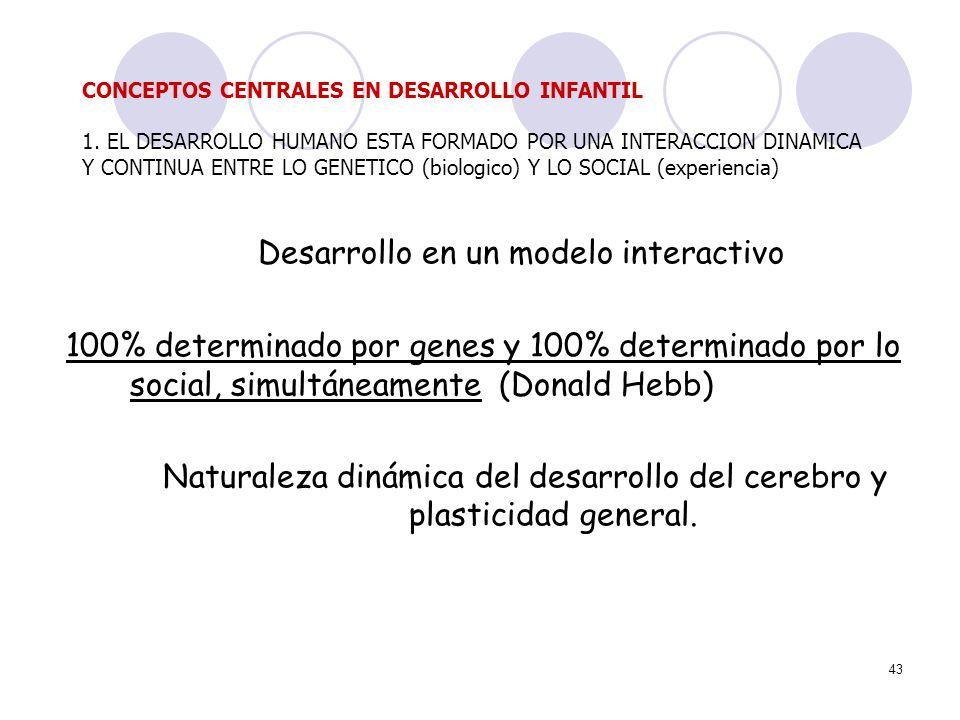 43 Desarrollo en un modelo interactivo 100% determinado por genes y 100% determinado por lo social, simultáneamente (Donald Hebb) Naturaleza dinámica
