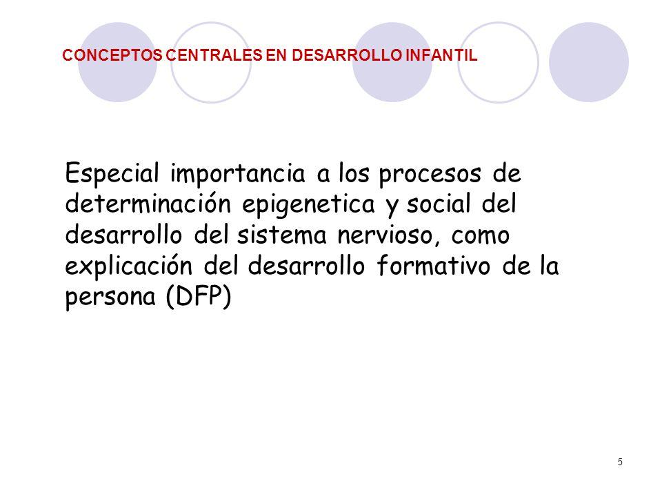 5 CONCEPTOS CENTRALES EN DESARROLLO INFANTIL Especial importancia a los procesos de determinación epigenetica y social del desarrollo del sistema nerv