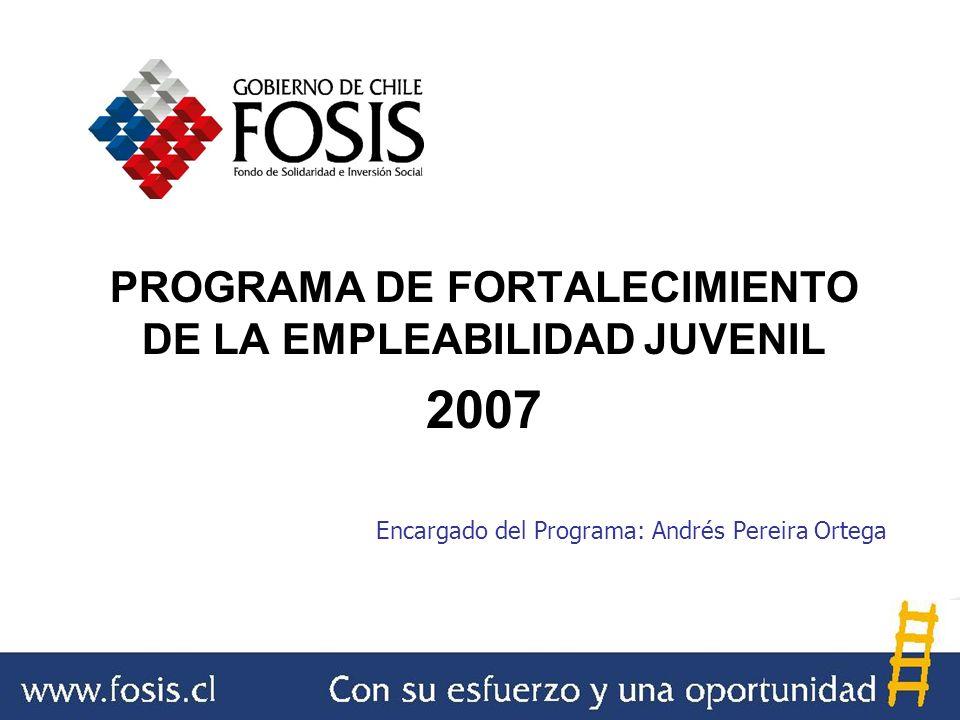 PROGRAMA DE FORTALECIMIENTO DE LA EMPLEABILIDAD JUVENIL 2007 Encargado del Programa: Andrés Pereira Ortega