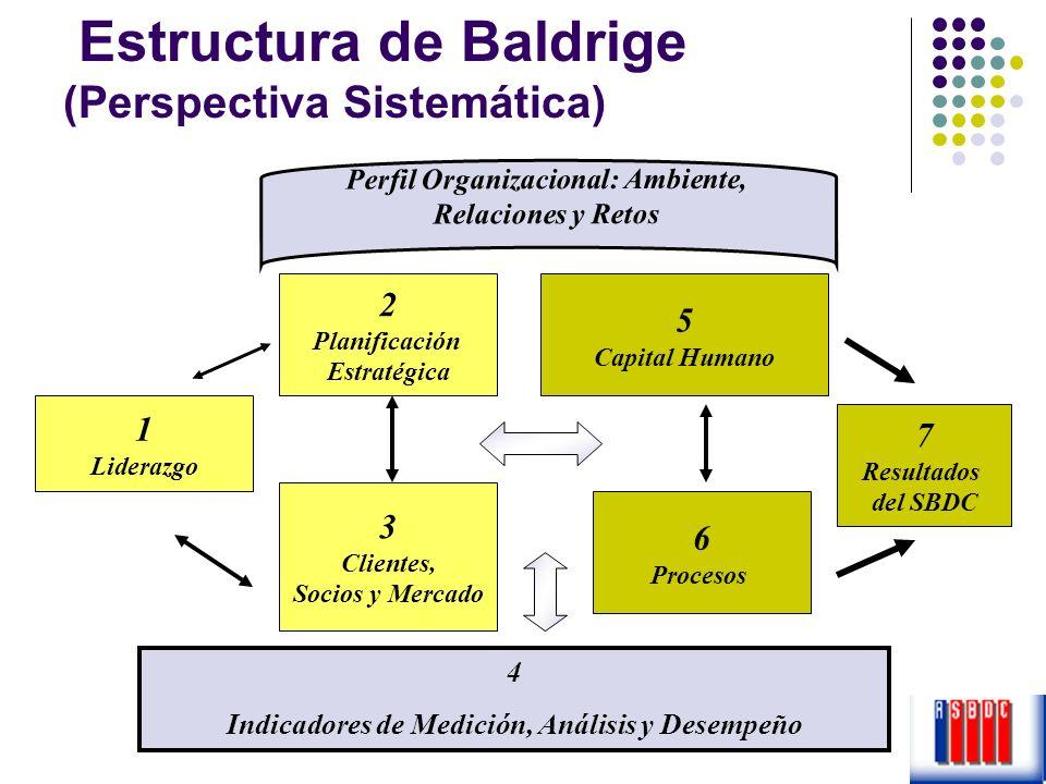 1 Liderazgo 2 Planificación Estratégica 3 Clientes, Socios y Mercado 5 Capital Humano 6 Procesos 7 Resultados del SBDC 4 Indicadores de Medición, Anál