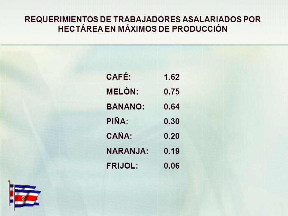 GENERALIDADES LABORALES DE LA ACTIVIDAD AGRÍCOLA 2005-2006 SALARIO MÍNIMO DE LEY: ¢4,719 (US$9.06) (II SEMESTRE DE 2006) PRECIO DE LA CAJUELA DE CAFÉ:
