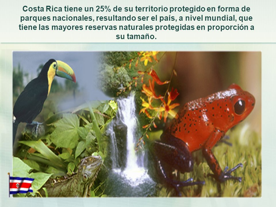 Costa Rica tiene un 25% de su territorio protegido en forma de parques nacionales, resultando ser el país, a nivel mundial, que tiene las mayores reservas naturales protegidas en proporción a su tamaño.
