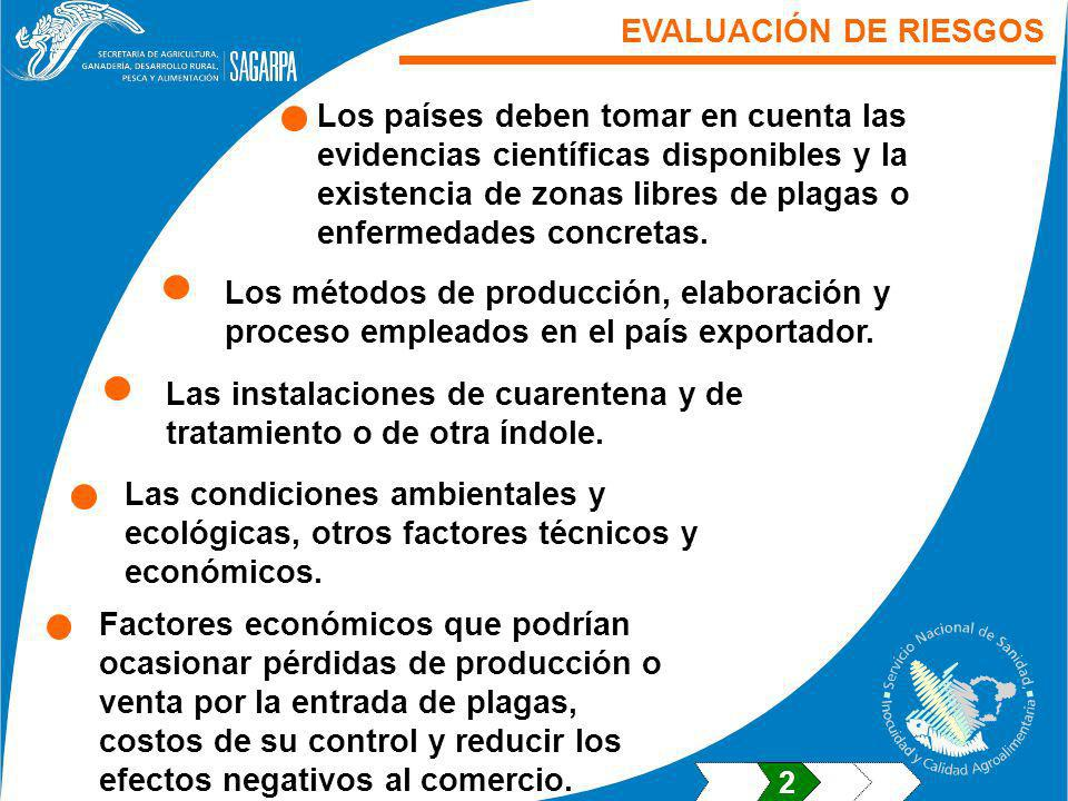 EVALUACIÓN DE RIESGOS Los países deben tomar en cuenta las evidencias científicas disponibles y la existencia de zonas libres de plagas o enfermedades